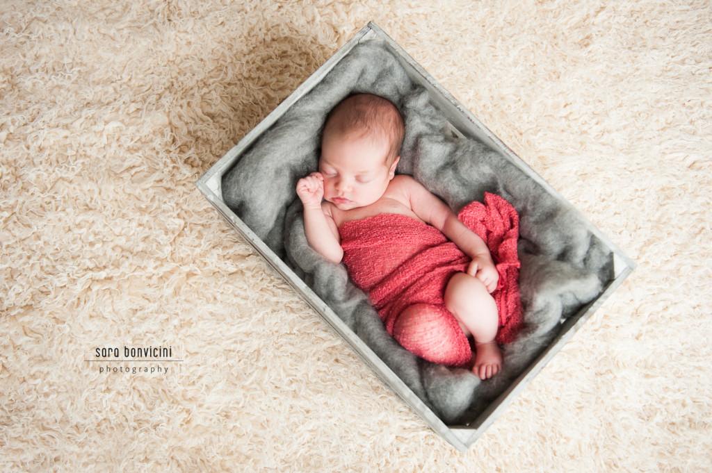 foto neonato rimini-21